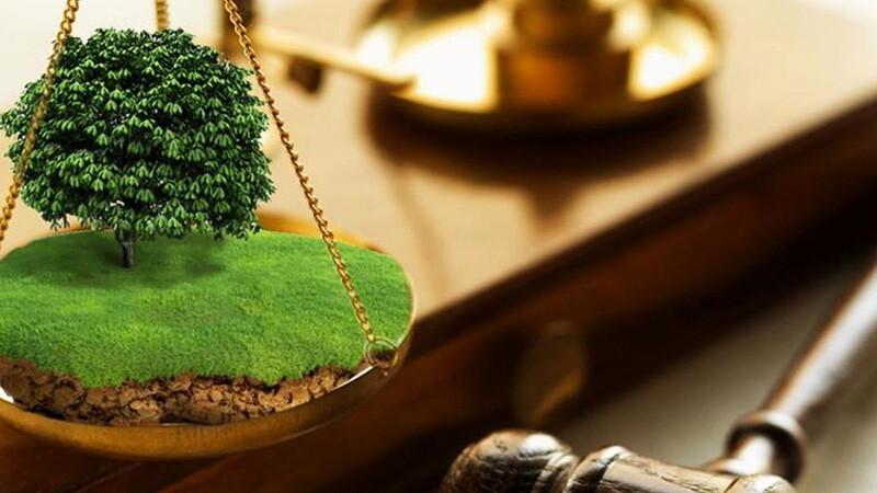 Судебная практика при разделе земельных участков